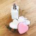 Bilden visar två hjärtformade disksvampar med en virkad disktrasa och en pump för diskmedel